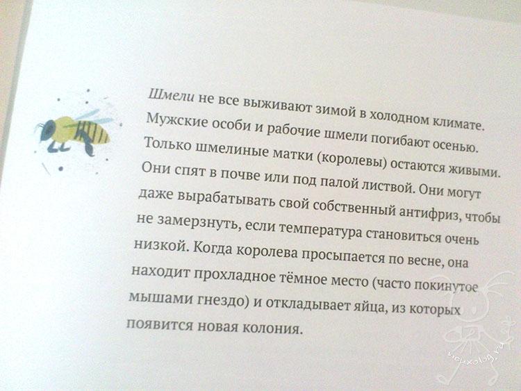 О-пчеле