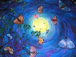 nochnye-motylki