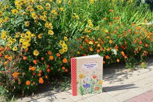 Изучаем садовые растения