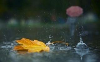 Тепло дождя — Голос неба
