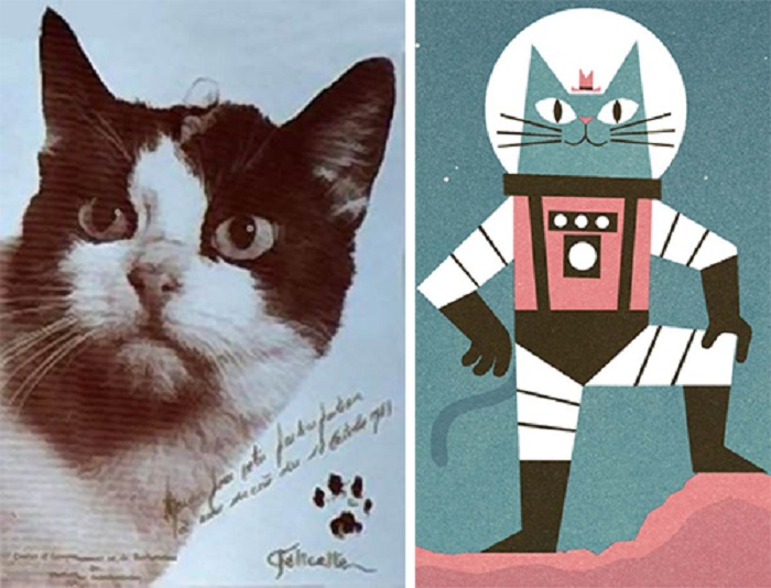 Тайна космического кота