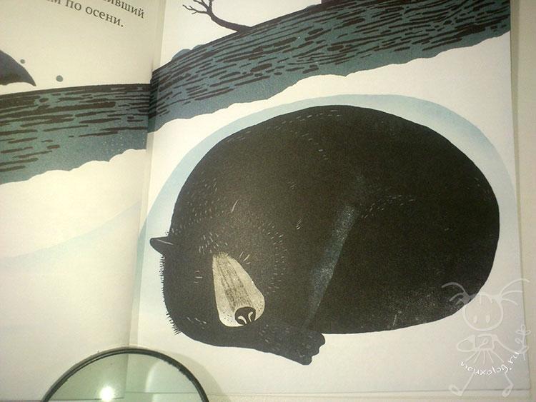 Медведь-в-берлоге