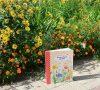 Собираем и изучаем садовые растения