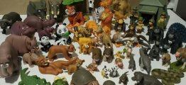 Животные дикой природы